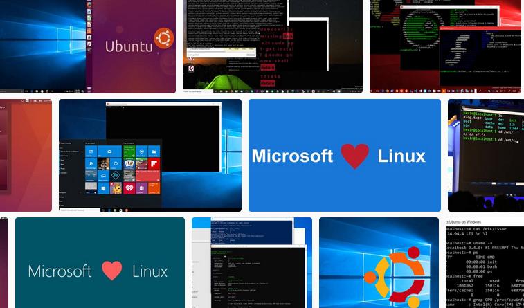 WSL2,Microsoft&Linux
