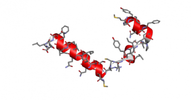 COVID-19: attacca la catena 1-beta dell'emoglobina e cattura la porfirina per inibire il metabolismo dell'eme umano
